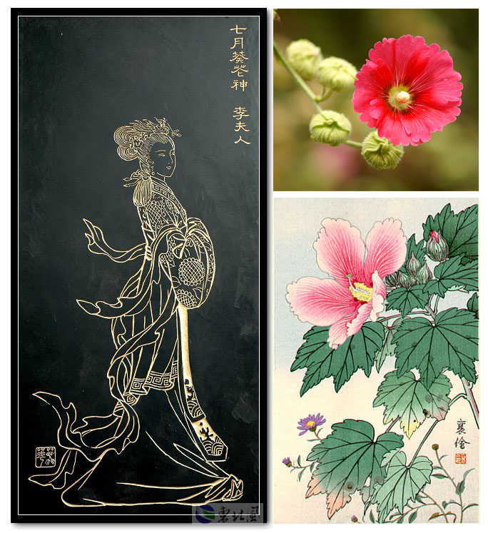 Chinese New Age. Flower Music. Богиня цветов. Hollyhock Blossom (Lady Li). Мальва